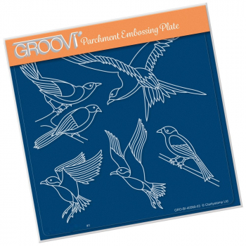 Feathered Friends - Groovi Plate