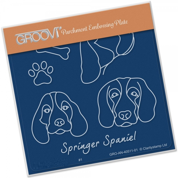 Groovi Baby Plate A6 - Kennel Club - Springer Spaniel