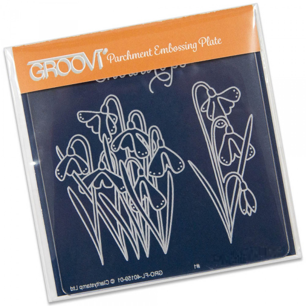 Groovi Baby Plate A6 - Snowdrops